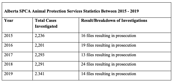 A table with three columns outlining data from Alberta's SPCA Animal Protection Services between 2015 and 2019.  Row one: 2015. Total cases investigated: 2236. Result / breakdown of investigations: 16 files resulting in prosecution. Row two: 2016. Total cases investigated: 2201. Result / breakdown of investigations: 19 files resulting in prosecution.  Row three: 2017. Total cases investigated: 2293. Result / breakdown of investigations: 13 files resulting in prosecution.  Row four: 2018. Total cases investigated: 2291. Result / breakdown of investigations: 24 files resulting in prosecution.  Row five: 2019. Total cases investigated: 2341. Result / breakdown of investigations: 14 files resulting in prosecution.