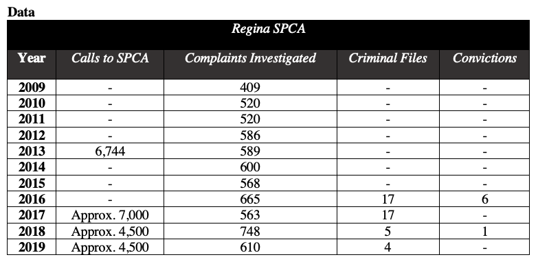A table outlines data from Regina's SPCA's Annual report. 2009. Complaints investigated: 409; 2010. Complaints investigated: 520; 2011. Complaints investigated: 520; 2012. Complaints investigated: 586; 2013. Calls to SPCA: 6744. Complaints investigated: 589; 2014. Complaints investigated: 600; 2015. Complaints investigated: 568; 2016. Complaints investigated: 665. Criminal Files: 17. Convictions: 6; 2017. Calls to SPCA: Approximately 7000. Complaints investigated: 563. Criminal files: 17; 2018. Calls to SPCA: Approximately 4500. Complaints investigated: 748. Criminal files: 5. Convictions: 1; 2019. Calls to SPCA: Approximately 4500. Complaints investigated: 610. Criminal files: 4.